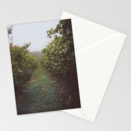 Orchard Row Stationery Cards