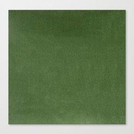 Sage Green Velvet texture Canvas Print