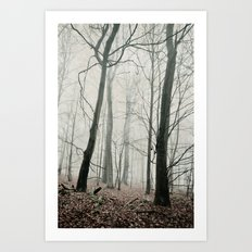 bare trees in fog Art Print
