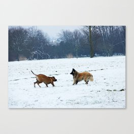 Lets play - Dogs in the snow Canvas Print