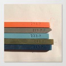 Chosen Colors Canvas Print