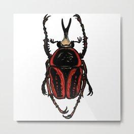 Goliath Beetle Metal Print