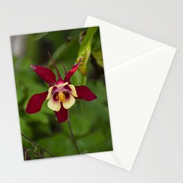 Red and Yellow Columbine Stationery Cards