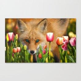 fox in tulips Canvas Print