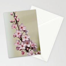 Pretty Pink Cherry Blossom Flowers Branch Stationery Cards