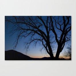 Tressel Tree Canvas Print