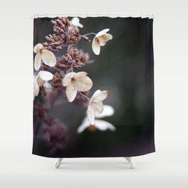 Winter Thaw Shower Curtain