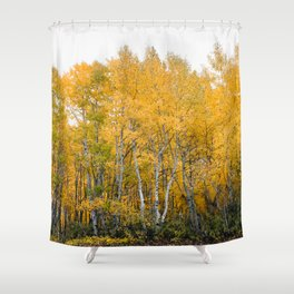 Fall Color in the Sierras Shower Curtain