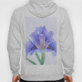 Iris flower Hoody