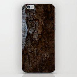 Kings Canyon Tree iPhone Skin