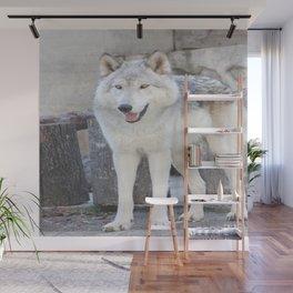 Happy boy Wall Mural