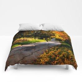 Autumn Dreams. Comforters