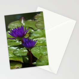 Nymphaea Stationery Cards