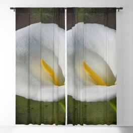 White Lily Blackout Curtain