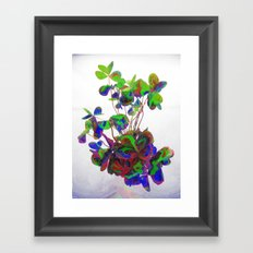 Cut clovers, databending/vector painting/dream smoothing rendition. Framed Art Print
