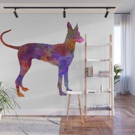 Cirneco dell etna dog in watercolor Wall Mural