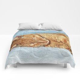 Sleepy Kitty Comforters