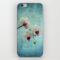 orchid iPhone & iPod Skins featuring Orchid by KunstFabrik_StaticMovement Manu Jobst