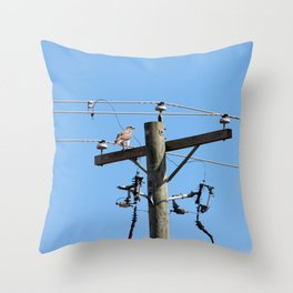 Red Tailed Hawk on Telephone Pole 3 Throw Pillow