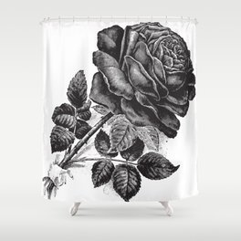 Engraved Rose Illustration Shower Curtain