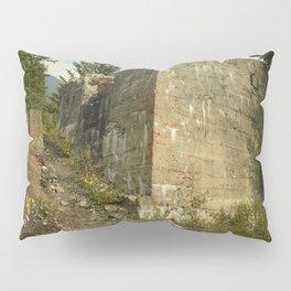 The Tipple Pillow Sham