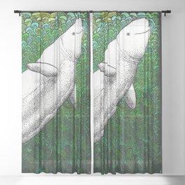 Beautiful beluga whale in the ocean Sheer Curtain