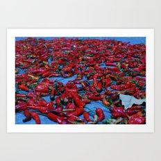 Cayenne pepper  Art Print