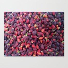 Berries in Paloquemao - Bayas en Paloquemao Canvas Print