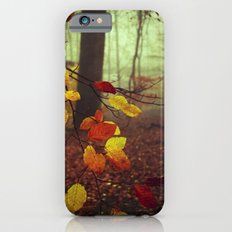 Leaves in Autumn Slim Case iPhone 6