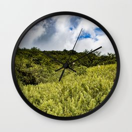 Beautiful Blue Sky Filled with Clouds of the Fern Covered Side of Mombacho Volcano, Nicaragua Wall Clock