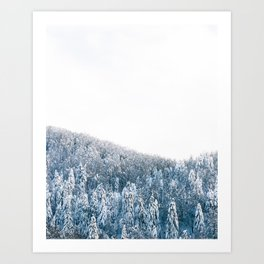 Snow covered spruce winter forest Art Print