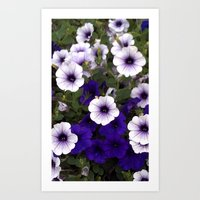 Purple Snowflakes Art Print