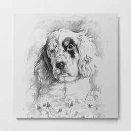 English Setter puppy Black and white portrait Metal Print