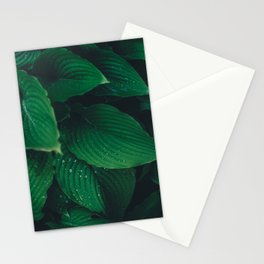 Moist Leaves Stationery Cards