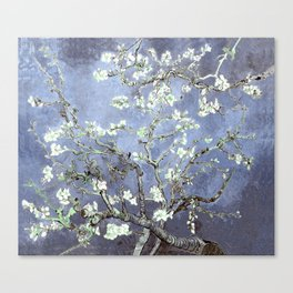 Vincent Van Gogh Almond Blossoms : Steel Blue & Gray Canvas Print