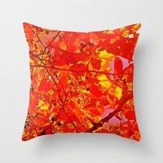 Fall Trees Throw Pillow