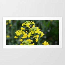 The yellow Art Print