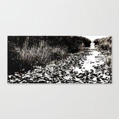 everglades Canvas Print