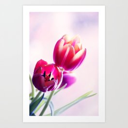 Happy Tulip Greetings Art Print