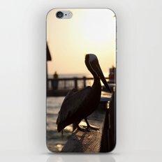The Pelican iPhone & iPod Skin
