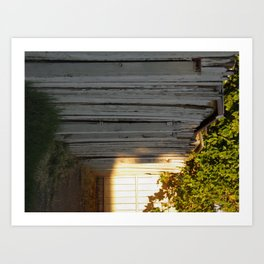 This Side of the Fence  Art Print
