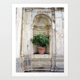 Urn with Lemon Tree Art Print