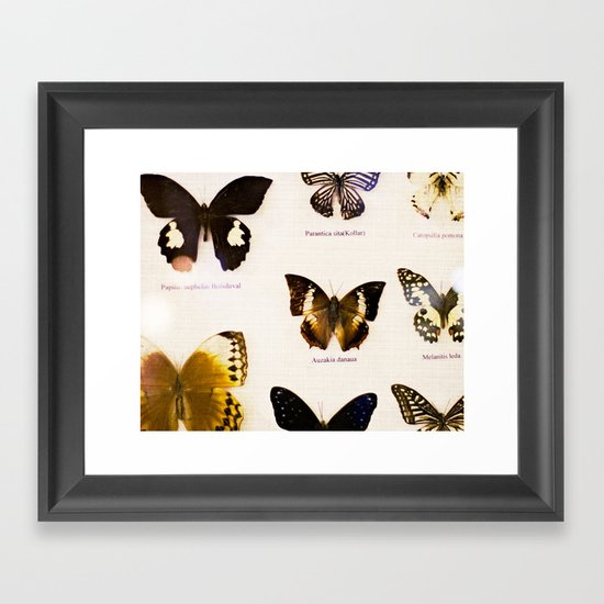Forever Beautiful Butterfly Framed Art Print