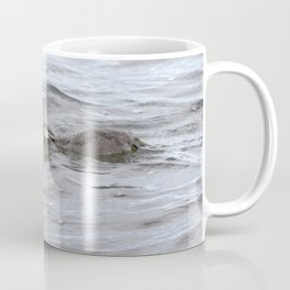 Watercolor Bird, Horned Grebe 03, Lake Myvatn, Iceland Coffee Mug