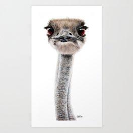 Emu art painting Art Print