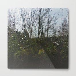 Rainy Landscape Metal Print