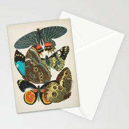Vintage Butterfly Illustration EA Seguy Papillon Stationery Cards