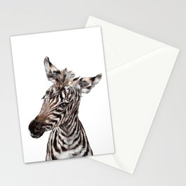 Baby Zebra Stationery Cards