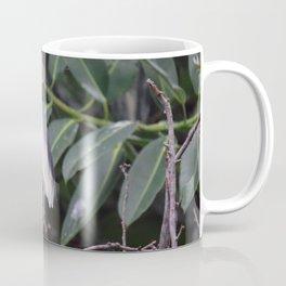 National Aviary - Pittsburgh - Javan Pond Heron Coffee Mug