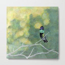Hummingbird at Dawn Metal Print